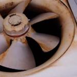 換気扇掃除のタイミングは年末じゃない!?もっとラクにできる方法とは?