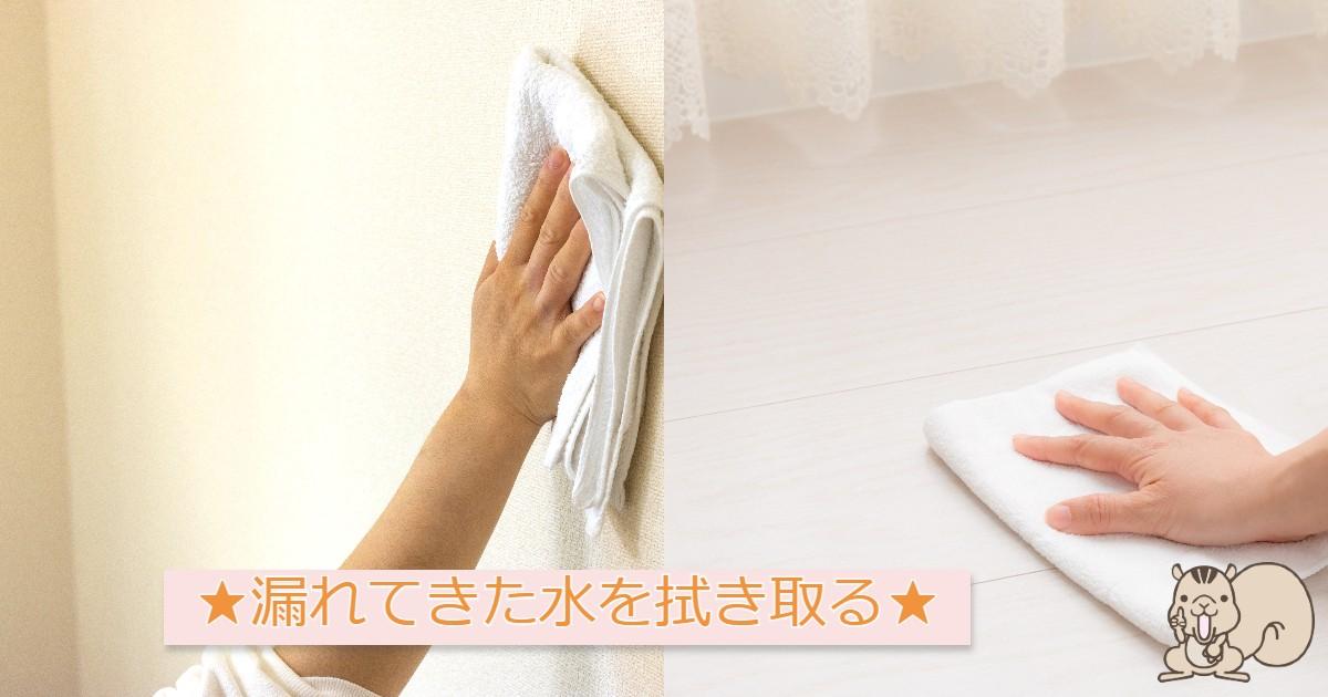 床と壁を拭き取る画像