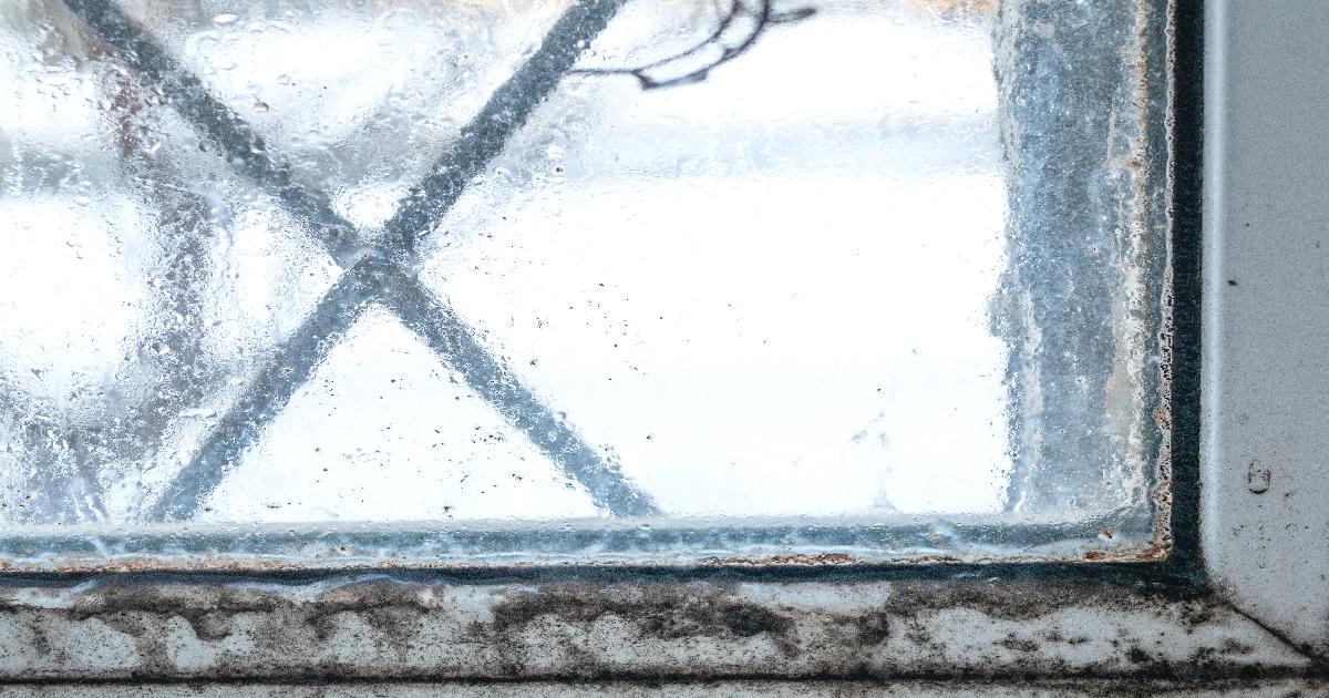 湿気とカビの多い窓